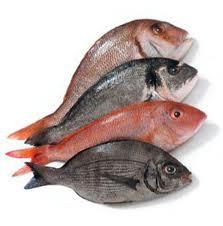 Il pesce protegge il cuore